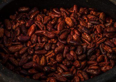 betulia-main-criollo-beans